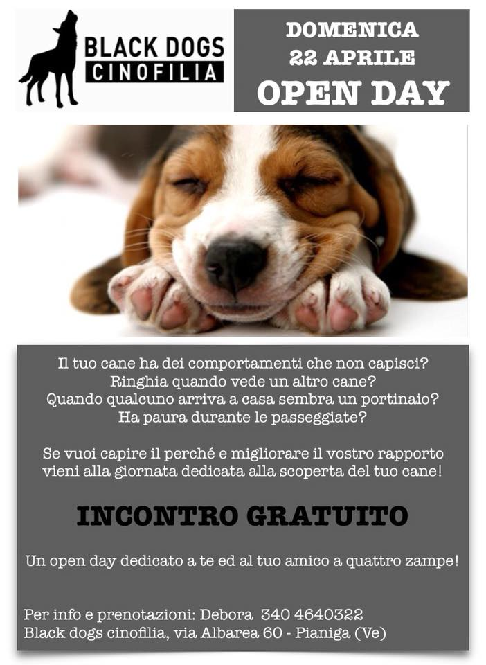 Open-Day-flyer