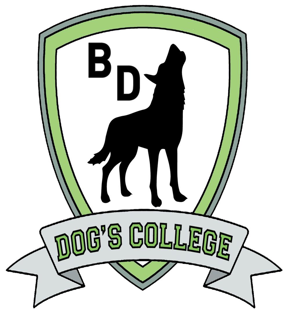 Dog's College Padova