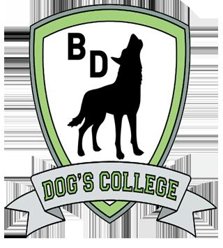 dog's college